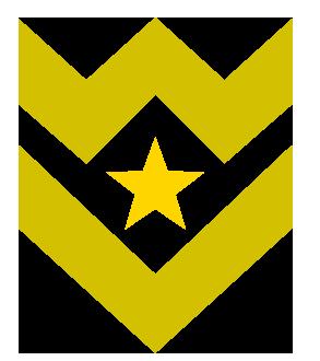 Abzeichen mit Stern