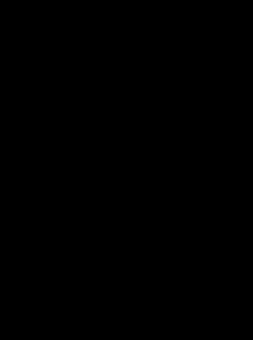 Totenkopf Bandit mit Knochen
